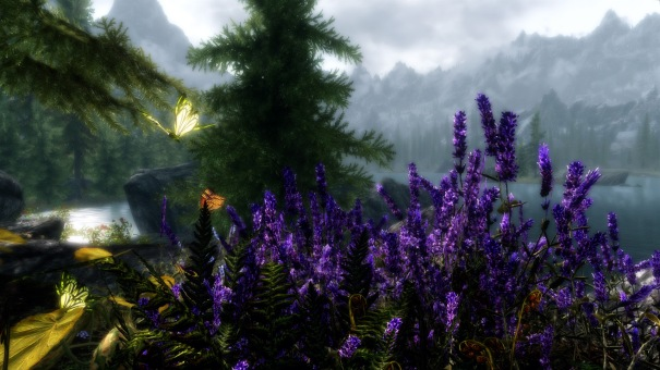 https://sigurre.files.wordpress.com/2013/01/skyrim-butterfly-catcher.jpg?w=605&h=340